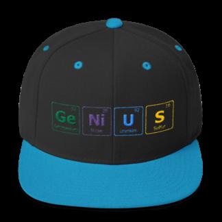 Genius Snapback Hat